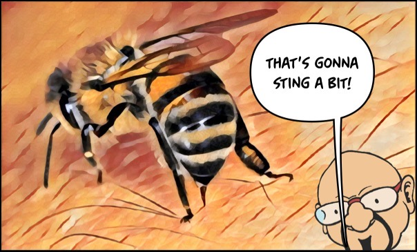 A bee stings its victim